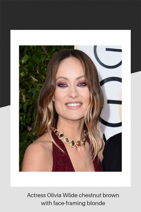 Olivia Wilde chestnut brown hair