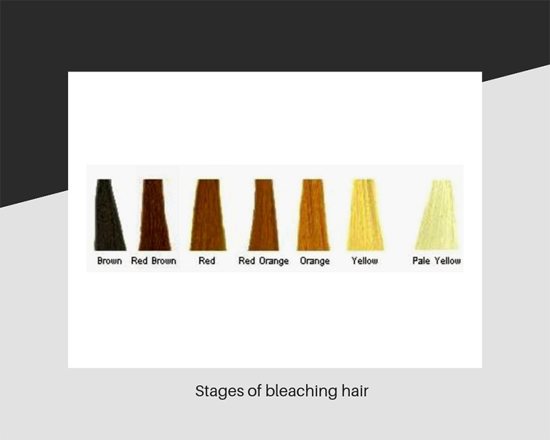Stages of hair bleaching
