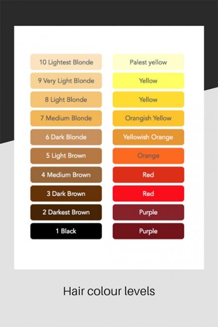 Hair colour level chart
